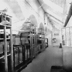 Vivarium: Raum mit Terrarien, 1910