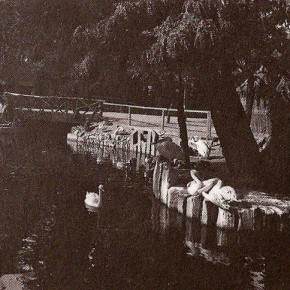 Tiergarten am Schüttel (um 1900)